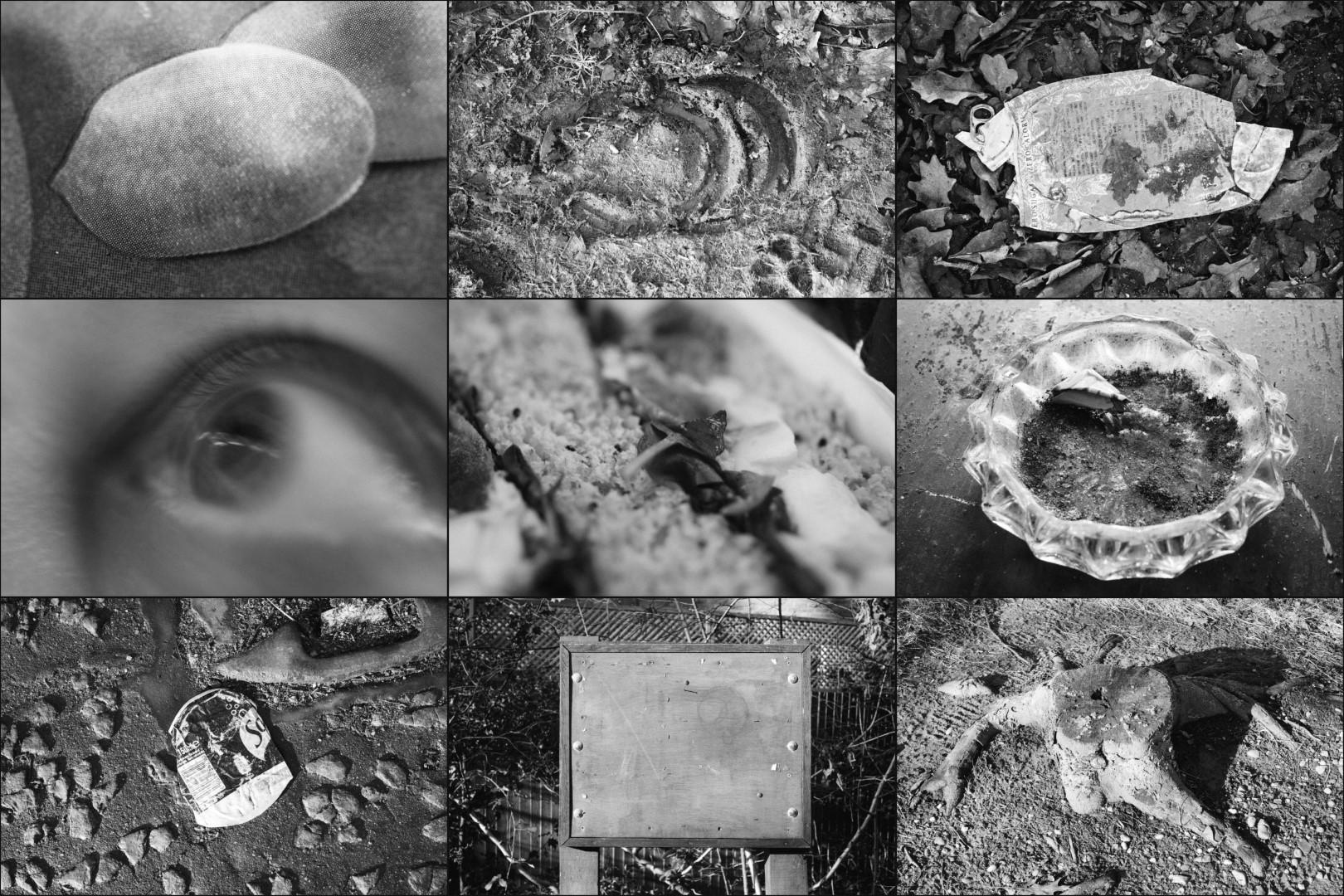 Welwyn Circular walk - objects SWC69 (WEB)